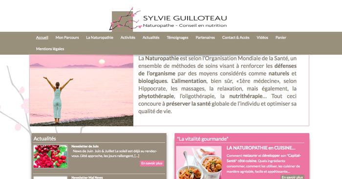 Naturopathe nantes avant refonte site internet