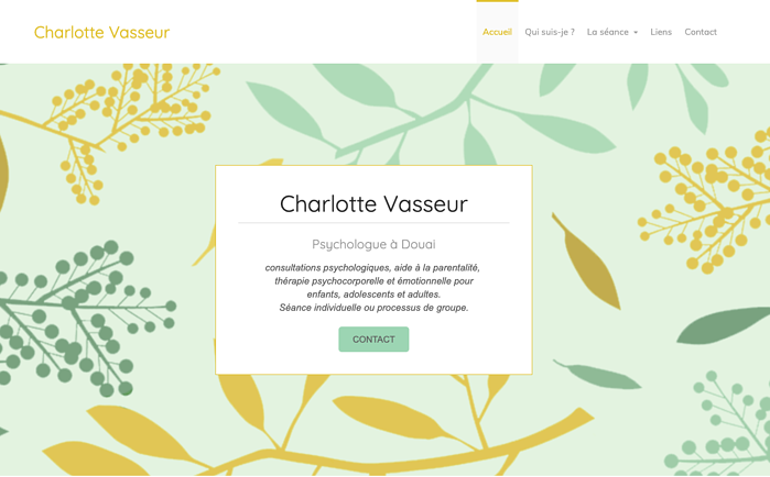 Exemple site experience utilisateur vasseur