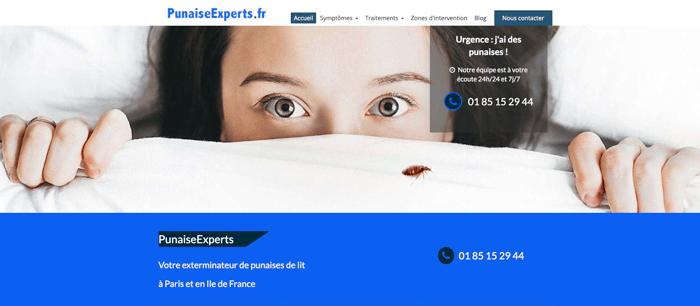 PunaiseExperts meilleur exemple site internet artisan