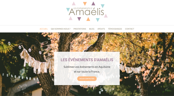 Exemple-page-accueil-site-internet-pro