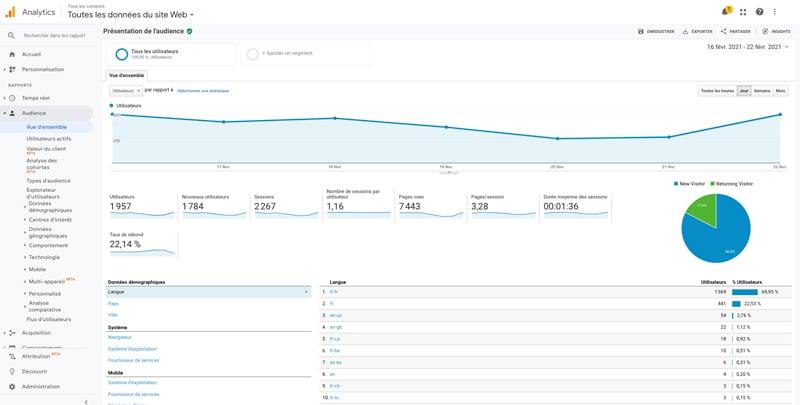 Capture exemple Google Analytics audit referencement